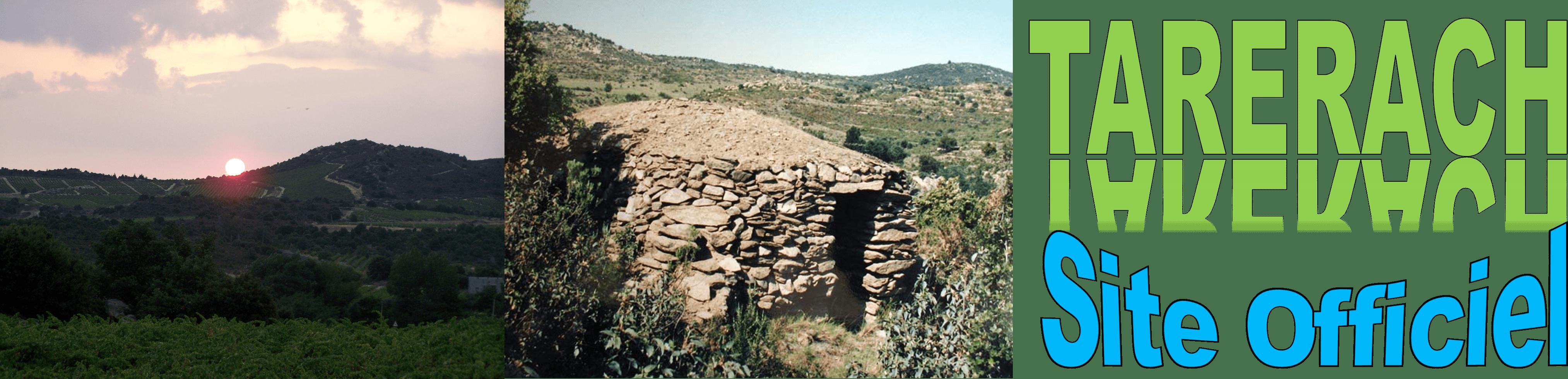 Tarerach